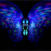 Blue Night Butterfly Mixed Media Painting Art Prints & Posters by Heinz G Mielke