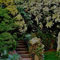 Stairs that lead to Garden Trails Art Prints & Posters by Rick Todaro