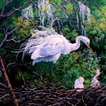 Springs First Blessings- Snowy Egret Chicks