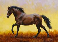 Running Dark Bay Horse
