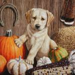 """Pumpkin Harvest Puppy"" by csforest"