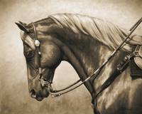 Western Style Quarter Horse In Sepia