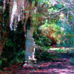 """Magnolia Gardens South Carolina"" by GinetteCallaway"