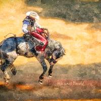Bucking Bronco Art Prints & Posters by Janet David