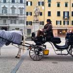 """Old horse-drawn carriage"" by ItalianPhotos"