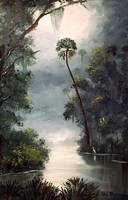 Tomoka River Painting