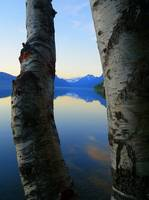 Lake McDonald - Through The Window Of Aspen