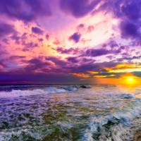purple-and-pink-beach-sunset- Art Prints & Posters by eszra tanner