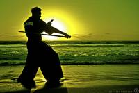 Martial Arts Man Silhouette Katana Fighter Stance