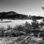 """Along Tahoe Meadows"" by Mun_Sing"