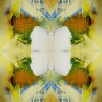 Fern Gully by Patti Friday