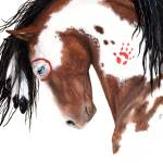 """Tricolor Paint - Spirit Horse"" by AmyLynBihrle"
