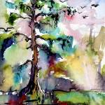 """Tree 1 Swamp Cypress Spanish Moss"" by GinetteCallaway"