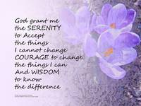 Serenity Prayer Crocus