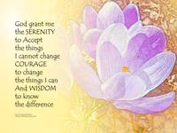 Serenity Prayer Crocus 2