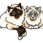 """Pair of Birman"" by OffLeashArt"