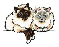 Pair of Birman