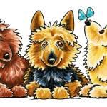 """Australian Terrier Trio"" by OffLeashArt"
