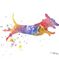 dachshund Art Prints & Posters by David Rogers