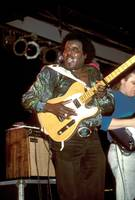 Guitarist Albert Collins