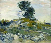 Vincent Van Gogh The Rocks