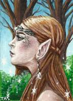 The Elven Beauty