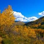 """""Vail Autumn Hike"""" by AlexandraZloto"