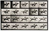EADWEARD MUYBRIDGE, (1830 - 1904), JOCKEY ON A GAL