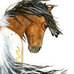 """Majestic Pinto Mustang 110"" by AmyLynBihrle"