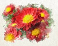 Red Chrysanthemum Flower Watercolor Painting