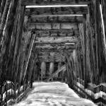 """Train Trestle"" by LJdesigns"