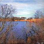 """""""January at the lake"""" by micspics444"""