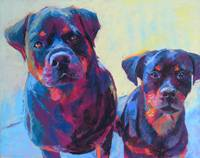 ronnie and Tedo the Rottweilers
