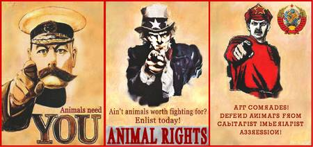 Animal Rights Poster