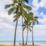 """""""Hawaiian coastline"""" by SueLeonard"""