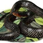 """Eastern Indigo Snake"" by inkart"