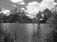 Jenny Lake - Black And White Photography