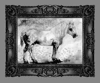Percheron Modern Horse Art by Ginette