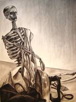 Skeleton Still LIfe