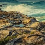 """""""South Curly Beach"""" by dawnleblanc"""