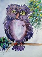 Purple Bumbly Woot Owl