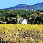 """Catskill Fields"" by ralphnelsen"