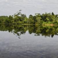 Amazon Riverscape Art Prints & Posters by Allen Sheffield