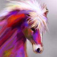 Horse True Colors
