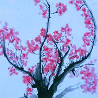 spring cherry blossom Art Prints & Posters by Abigail Wolf