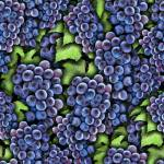 """Grapes on The vine"" by bloomingvinedesign"