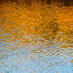 """Water Ripples Abstract"" by anniepics"