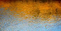 Water Ripples Abstract