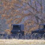 """Amish Buggies 2"" by GlendaBorchelt"