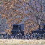 """""""Amish Buggies 2"""" by GlendaBorchelt"""